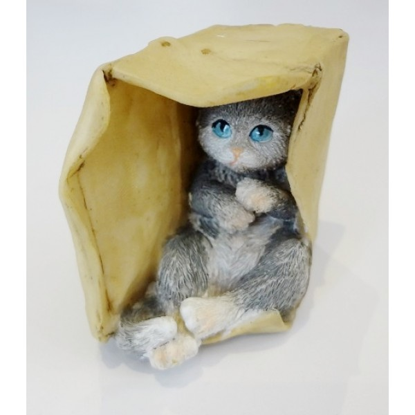 Sitting comfortable in the box