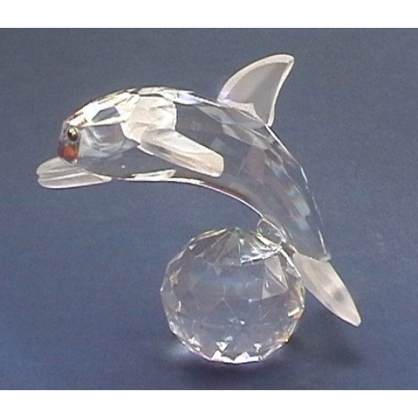 Dolphin on a ball